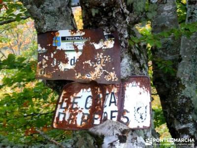 Hayedos Parque Natural de Redes;la pedriza mapa callejones de las majadas puente de la constitución